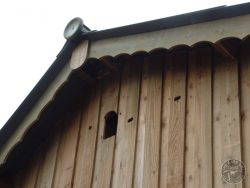 Barn Owl Internal Provision Access Hole Outside