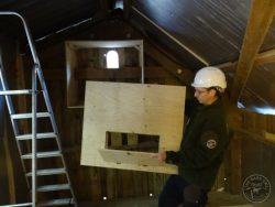 Barn Owl Internal Provision Inspection Panel1