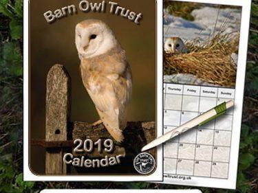 2019 Calendar Pen