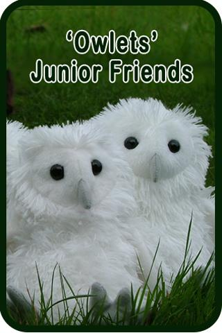 Owlets – Junior Friends of the Barn Owl Trust