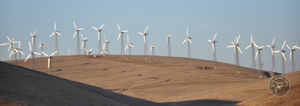 Altamont Pass Wind Farm