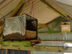 Bad Barn Owl Nestbox Design 11