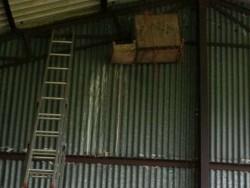 Bad Barn Owl Nestbox Design 17