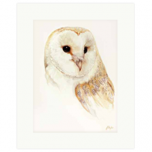 Barn Owl Print By Jan Taylor