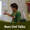 Barn owl talks