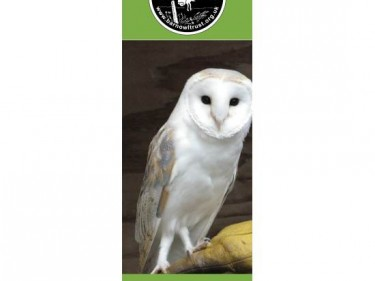 Barn Owl Trust Bookmark Baley