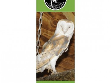 Barn Owl Trust Bookmark Barney