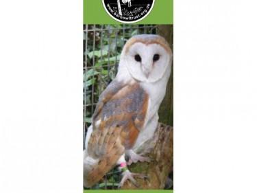 Barn Owl Trust Bookmark Doreen