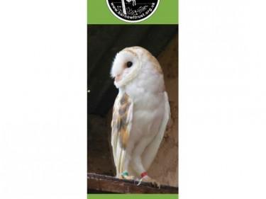 Barn Owl Trust Bookmark Earnest