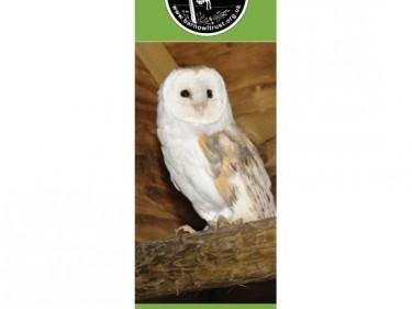 Barn Owl Trust Bookmark Flinty