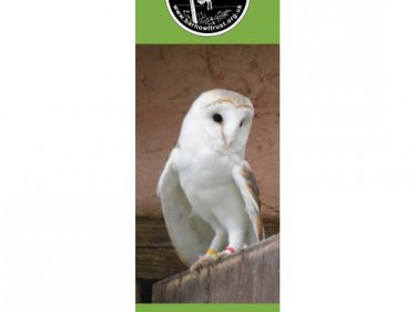 Barn Owl Trust Bookmark Grace