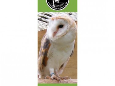 Barn Owl Trust Bookmark Rose