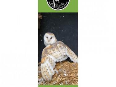Barn Owl Trust Bookmark Valentine