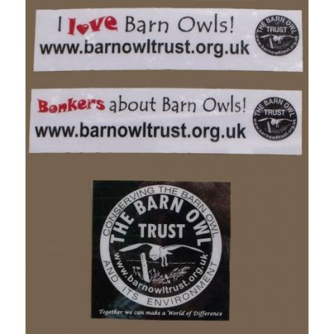 Barn Owl Trust Car Stickers