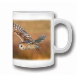 Ceramic Barn Owl Mug
