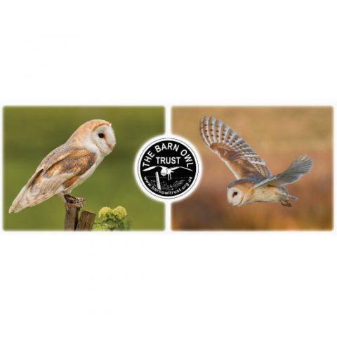 Barn Owl Trust Ceramic Mug