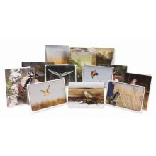 Barn Owl Trust Christmas Bumper Pack A6 Cards