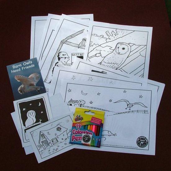 Barn Owl Trust Colouring Pack