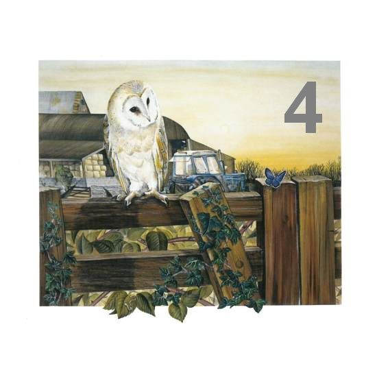 Barn Owl Trust Farmyard A6 Card