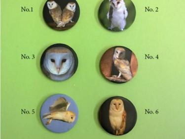 Barn Owl Trust Fridge Magnets