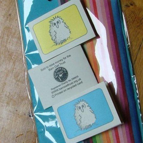 Barn Owl Trust Gift Wrap Pack 3