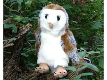 Barn Owl Trust Large Cuddly Owl