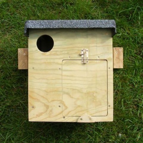 Little Owl nest box - indoor/outdoor - The Barn Owl Trust