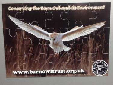 Barn Owl Trust Magnetic Puzzle