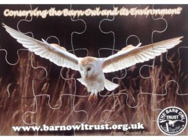 Barn Owl Trust Magnetic Puzzle Detail