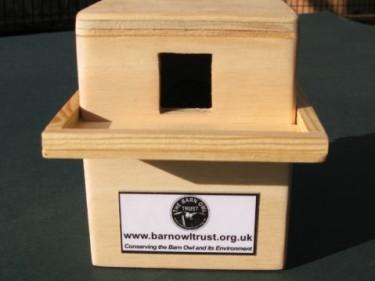 Barn Owl Trust Money Box