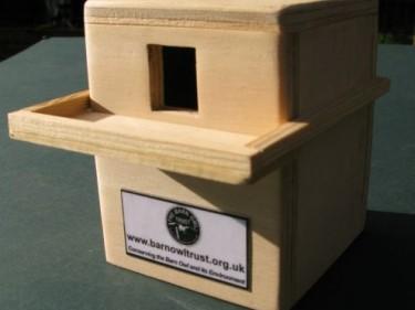 Barn Owl Trust Money Box Side View