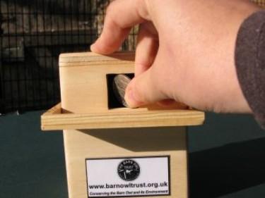 Barn Owl Trust Money Box With 10p