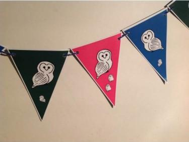 Barn Owl Trust Owl Bunting Closeup