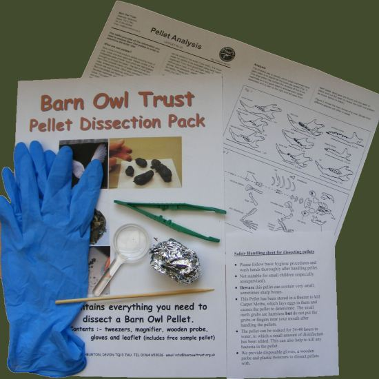 Barn Owl Trust Pellet Dissection Pack Contents