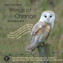 Barn Owl Trust Schools Pack Cd Cover
