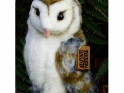 Barn Owl Trust Soft Toy Barn Owl Close Up
