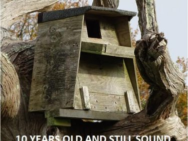 Barn Owl Trust Treebox 10 Years