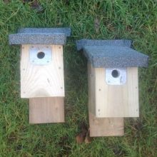 Barn Owl Trust Two Small Bird Boxes