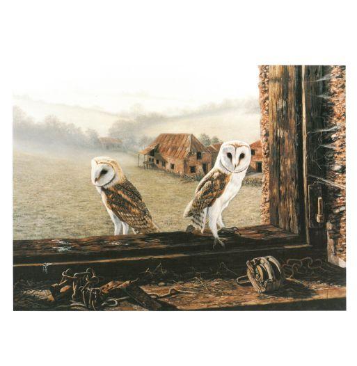 Barn Owl Trust Welcome Return Poster