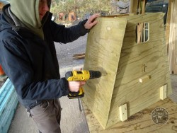 Barn Owl Tree Nestbox Construction 14