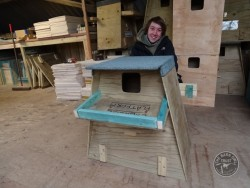 Barn Owl Tree Nestbox Construction 40