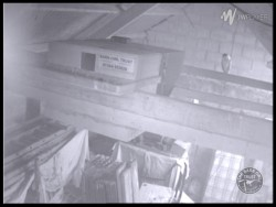 Barn Owl Webcam Barncam Screenshot 25th August 2015