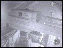 Barn Owl Webcam Barncam Screenshot 25th August 2015