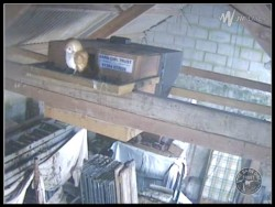 Barn Owl Webcam Barncam Screenshot 18th March 2015