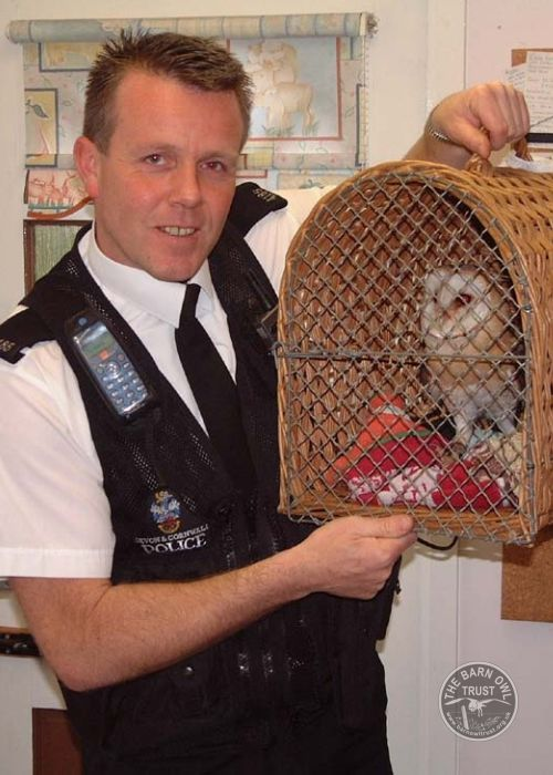 Wild-life Police with Captive Barn Owl