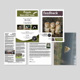 Email barn owl trust friend