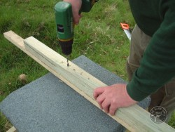 Erecting A Barn Owl Treebox 01