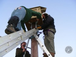 Erecting A Polebox By Hand 16