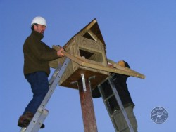 Erecting A Polebox By Hand 19