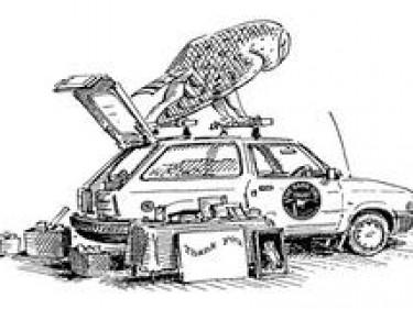 Giveacar Cartoon Image